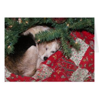 Sleepy Christmas Beagle Card