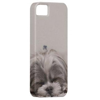 sleepy dog case iPhone 5 cover