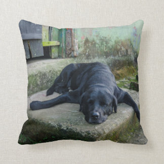 Sleepy Dog Cushion