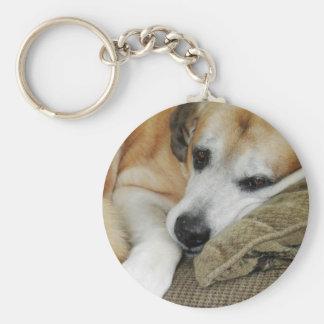 Sleepy Dog Napping Mutt Mixed Breed Pet Photo Key Ring