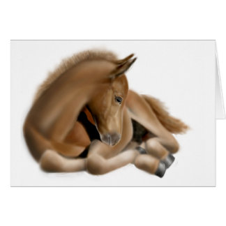 Sleepy Foal Card