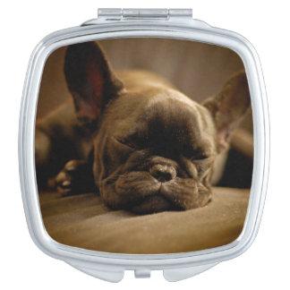 Sleepy French Bulldog Compact Mirrors