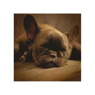Sleepy French Bulldog Wood Wall Art