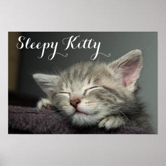 Sleepy Grey, Male Kitten Poster