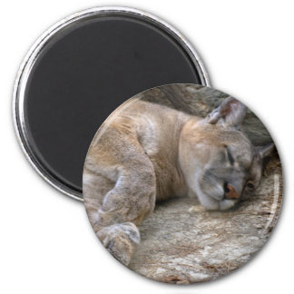 Sleepy Head 6 Cm Round Magnet