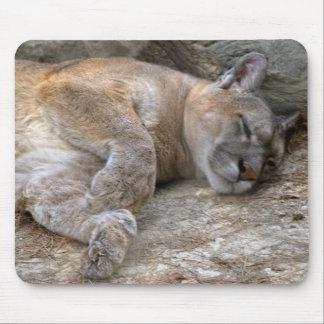 Sleepy Head Mouse Pad