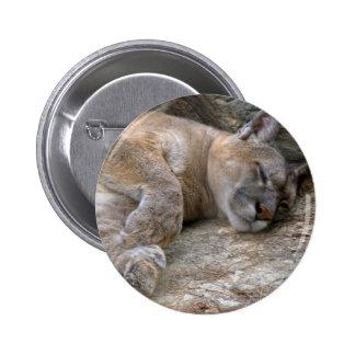 Sleepy Head Pinback Buttons
