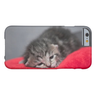 Sleepy kitten barely there iPhone 6 case