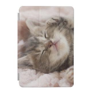 Sleepy Kitten iPad Mini Cover