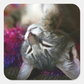Sleepy Kitten Square Sticker