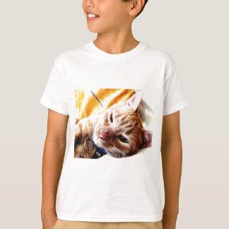 Sleepy Kitten Tshirts