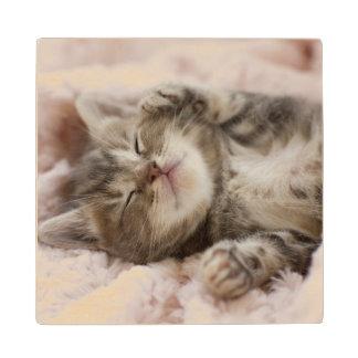 Sleepy Kitten Wood Coaster