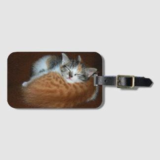 Sleepy kittens luggage tag
