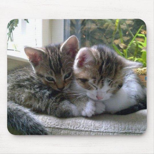 Sleepy Kittens Mouse Mat