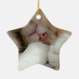 Sleepy Kitty Ceramic Star Decoration