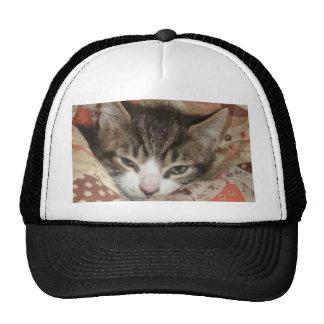 Sleepy Kitty Mesh Hats