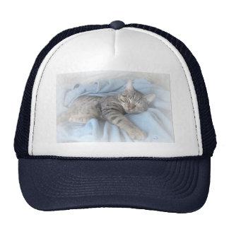 Sleepy Kitty Mesh Hat