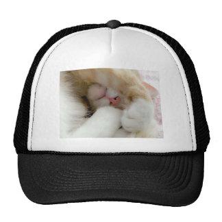 Sleepy Kitty Trucker Hat