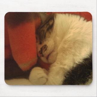 Sleepy Kitty Mouse Mat