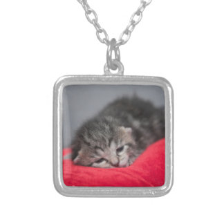 Sleepy kitty silver plated necklace