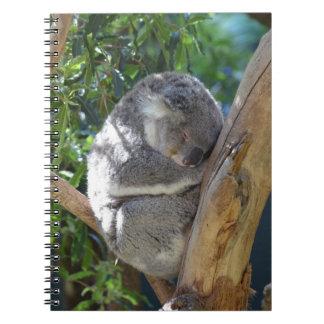 Sleepy Koala Notebooks
