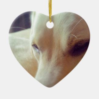Sleepy Labrador Ceramic Heart Decoration
