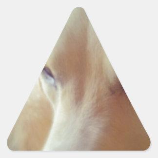 Sleepy Labrador Triangle Sticker