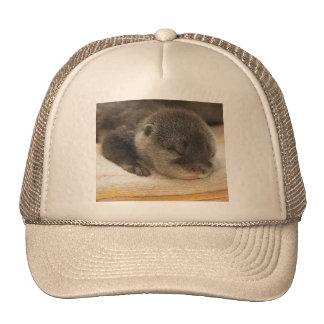Sleepy Otter Mesh Hats