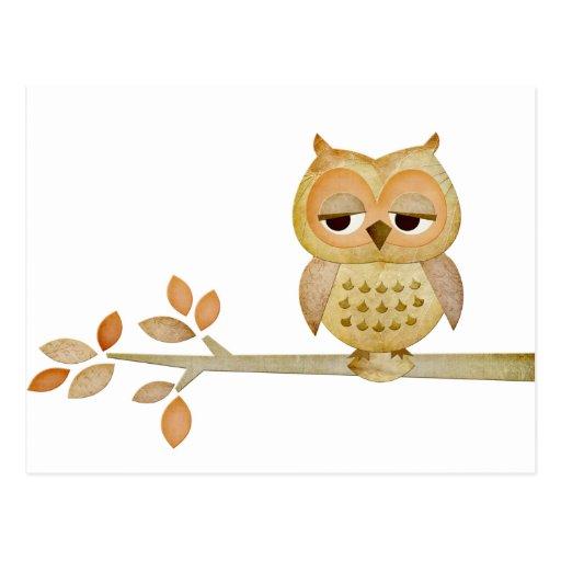 Sleepy Owl in Tree Post Cards