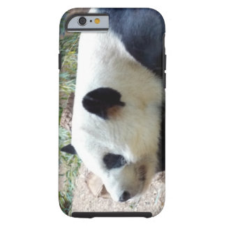 Sleepy Panda Bear Tough iPhone 6 Case