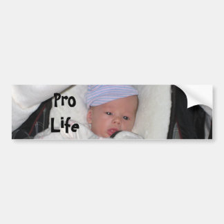 sleepy, Pro Life Bumper Sticker
