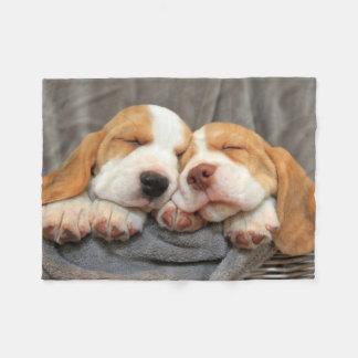 Sleepy Puppies Fleece Blanket