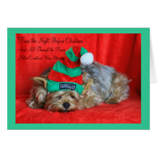 Sleepy Puppy Wearing Elf Hat Card