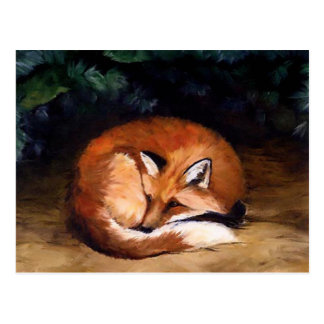 Sleepy Red Fox Animal Art Postcard