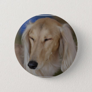 Sleepy Saluki Dog 6 Cm Round Badge