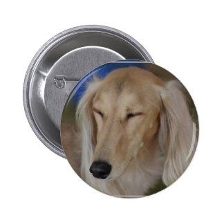 Sleepy Saluki Dog 6 Cm Round Badge