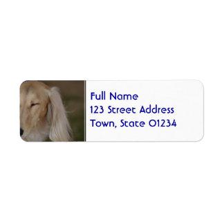 Sleepy Saluki Dog Return Address Label