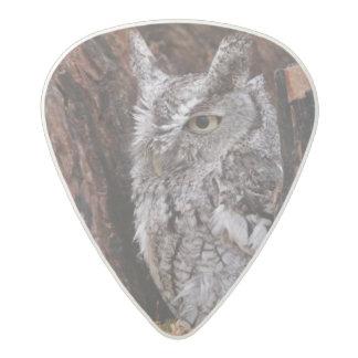 Sleepy Screech Owl Acetal Guitar Pick