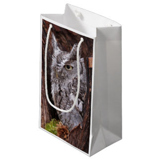 Sleepy Screech Owl Small Gift Bag