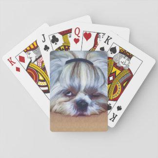 Sleepy Shih Tzu Dog Poker Cards