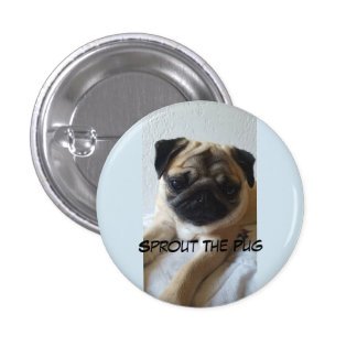 Sleepy Sprout on a Button