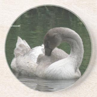 Sleepy Swan Coasters