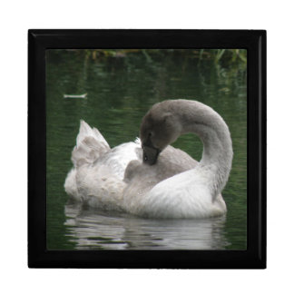 Sleepy Swan Gift Box