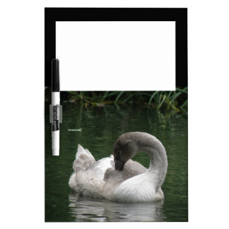 Sleepy Swan Memo Board