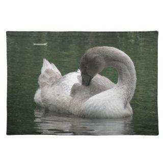 Sleepy Swan Placemat