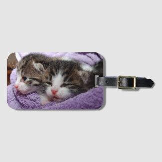 Sleepy sweet kittens luggage tag