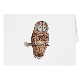 Sleepy Tawny owl Card