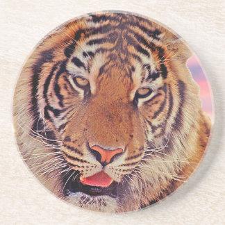 Sleepy Tiger - Coaster
