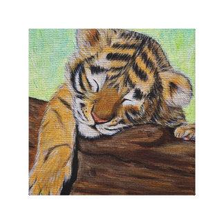 Sleepy Tiger cub Canvas Print