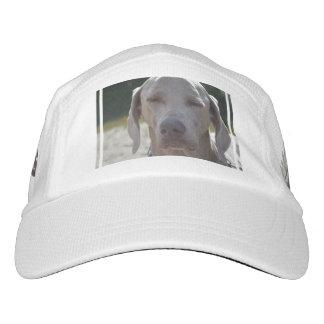 Sleepy Weimaraner Hat